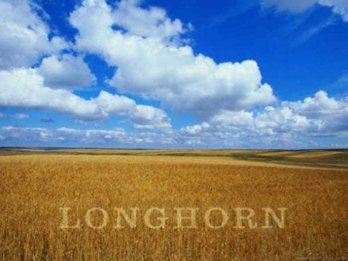 Windows Longhorn Wallpaper