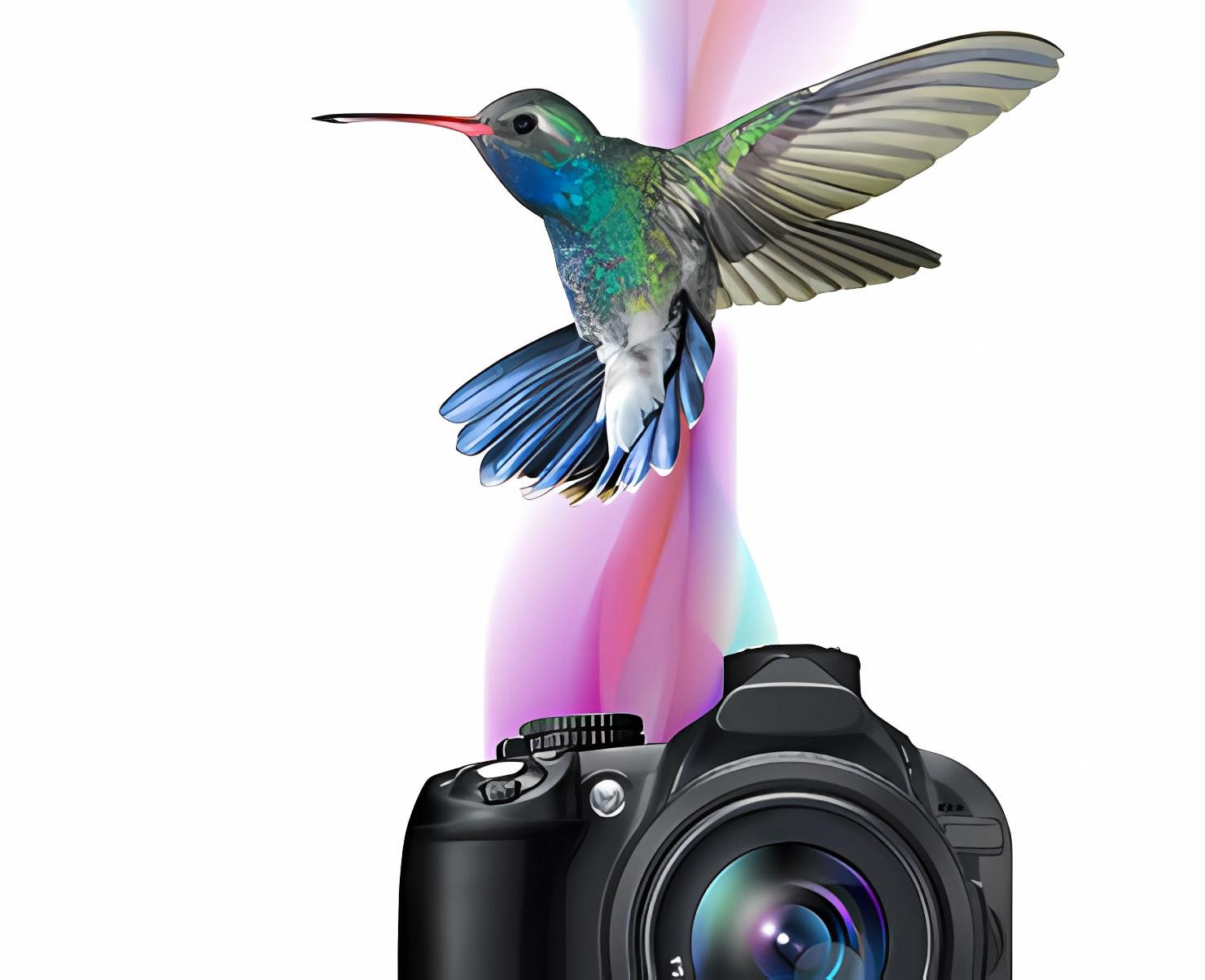 Corel AfterShot Pro for Linux RPM 64-Bit