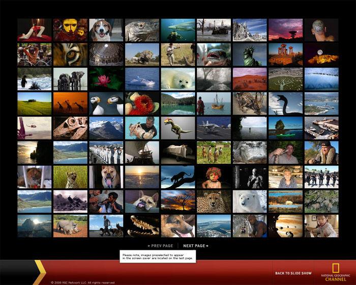 National Geographic Custom Screensaver