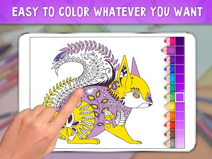 Coloring Book Bliss