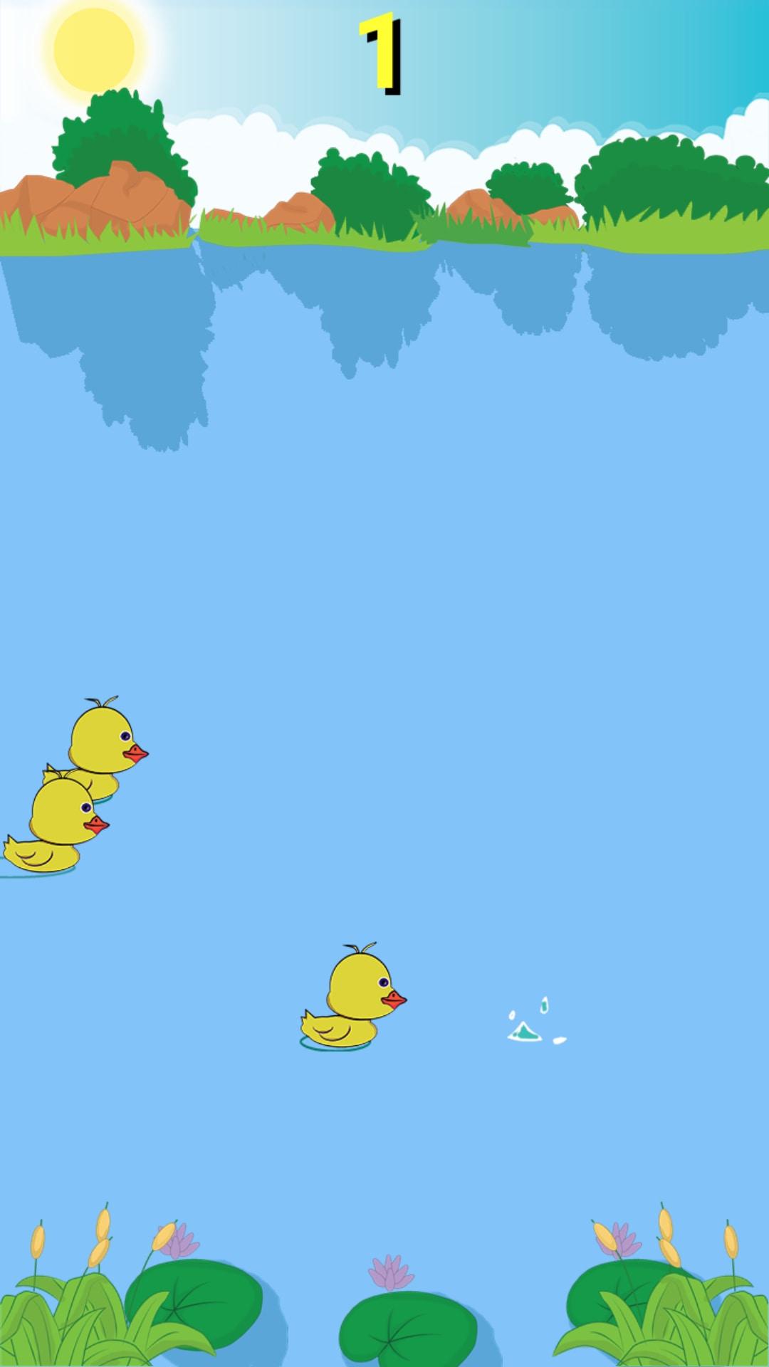 Bibe Ducks