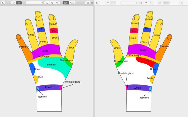 Massage Maps
