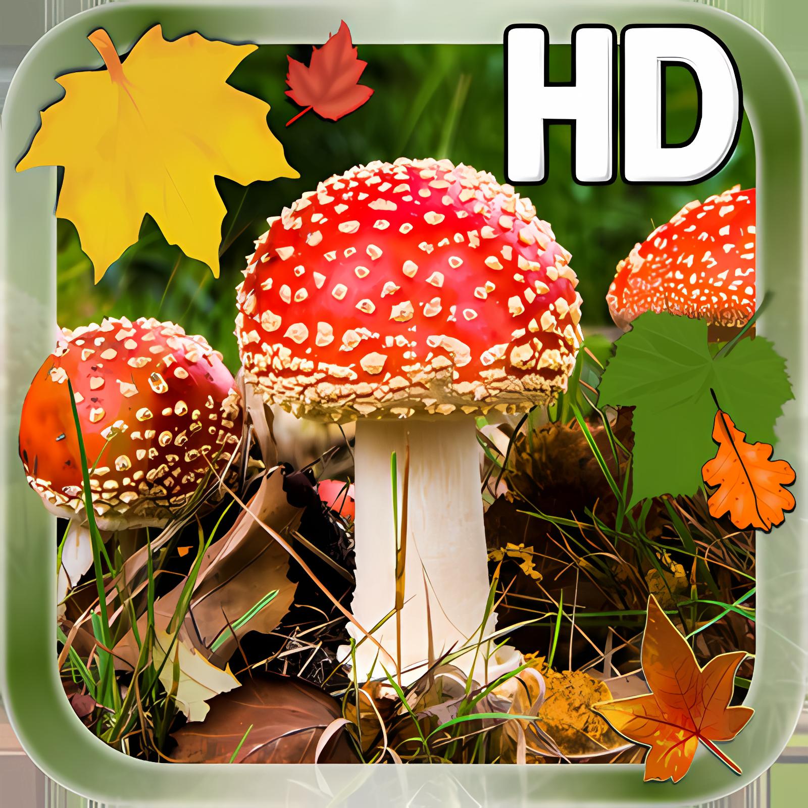 Leaves Mushroom HD LWP