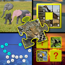 Kids animal puzzle and memory skill games
