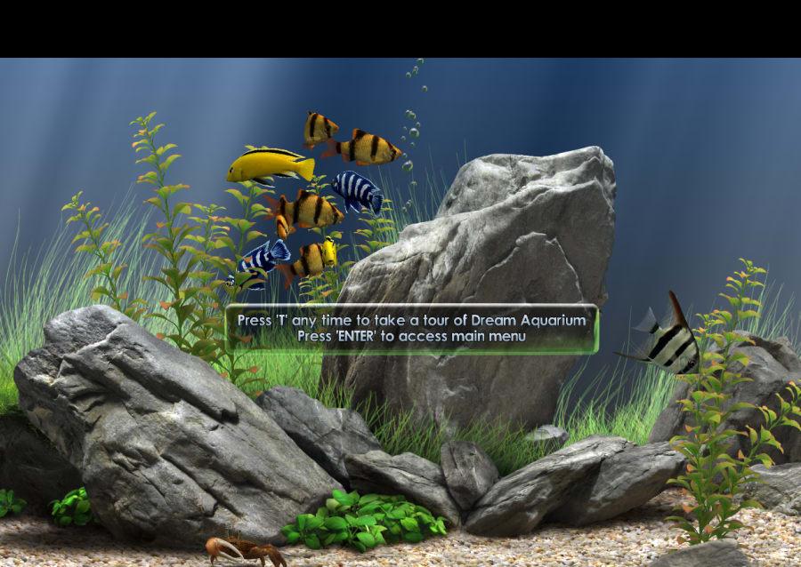 Dream aquarium screensaver download - Dream aquarium virtual fishtank 1 ...