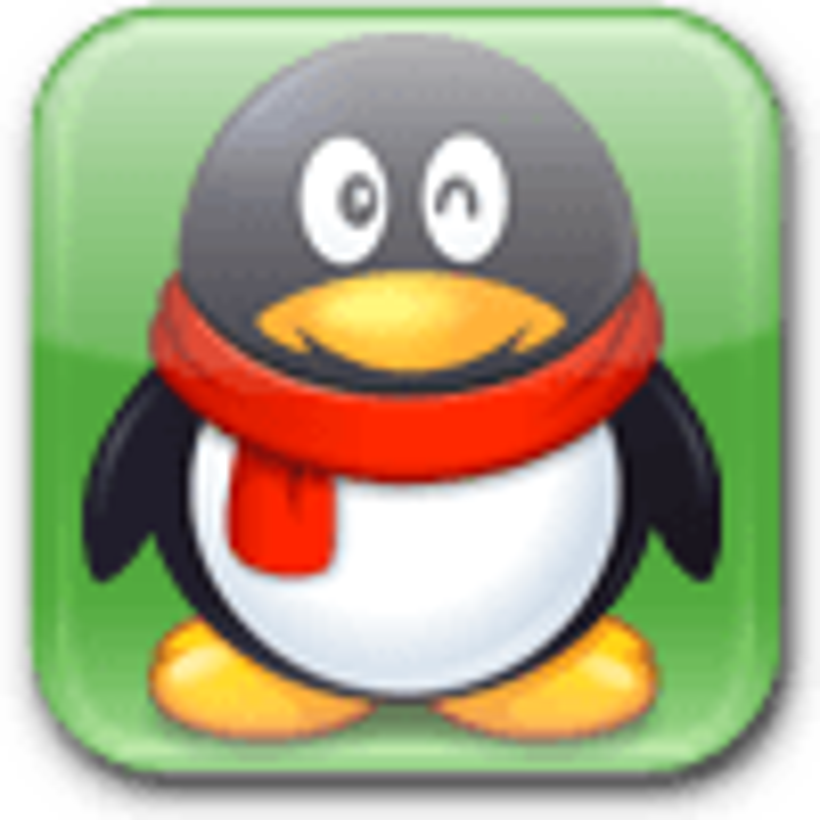 QQ Messenger International 1.1