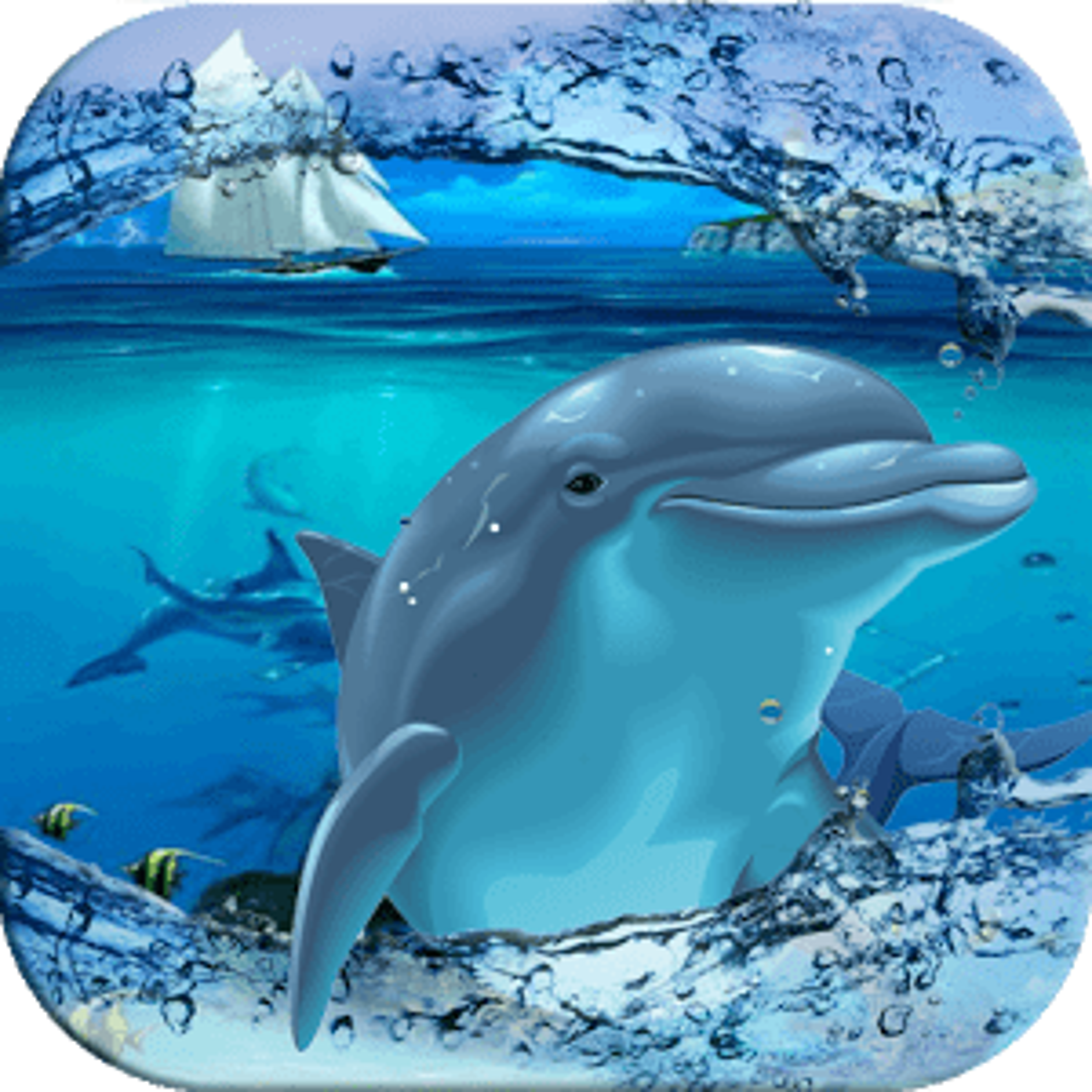 Mar delfines nadando