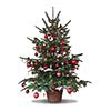 Fondo Christmas Tree