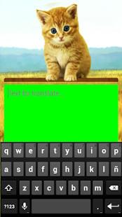 Traductor para Gatos