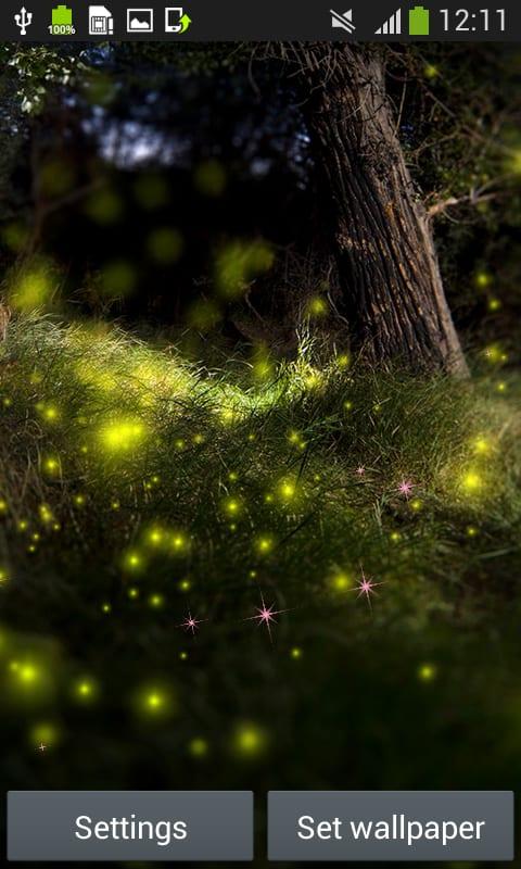 Fireflies Live Wallpapers