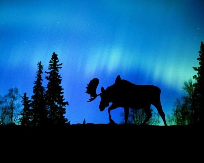 Aurora Boreal Wallpapers
