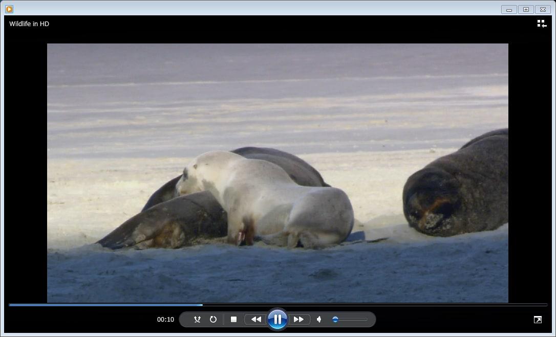 「Windows Media Player 12」の音楽再生方法
