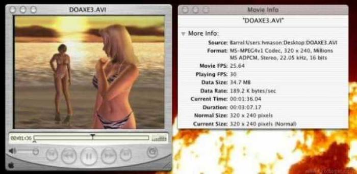 MS-MPEG4v1