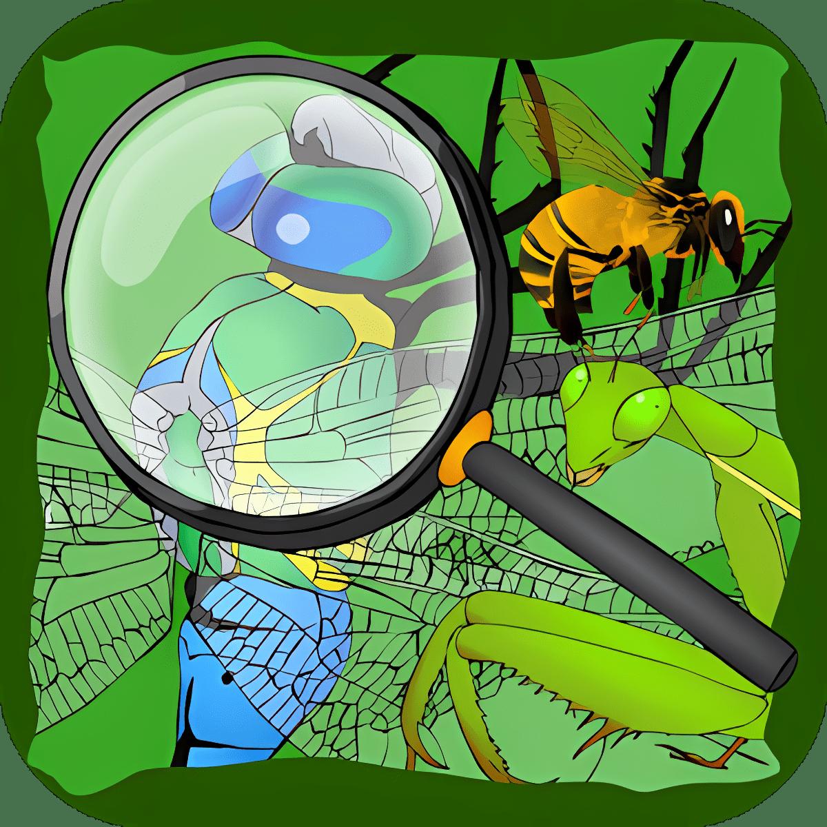 Encuentro los Insectos Ocultos