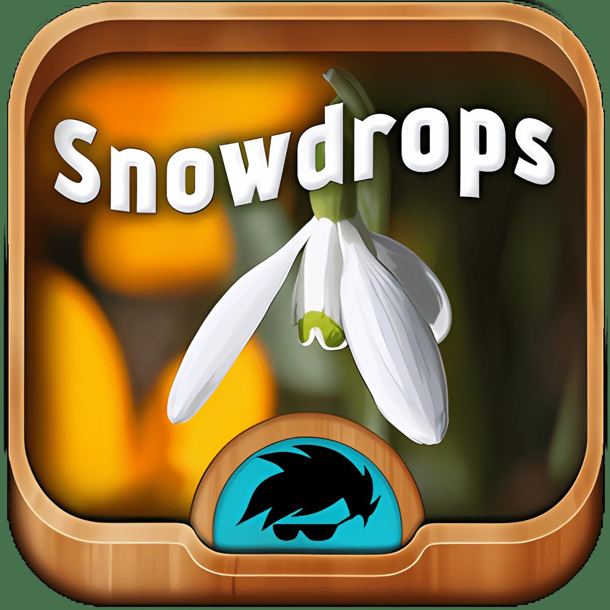 Snowdrops tema del teclado