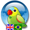 Vicon English Portuguese Dictionary
