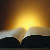 Digital Catholic Bible