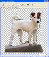 iFoxSoft Photo Crop Editor