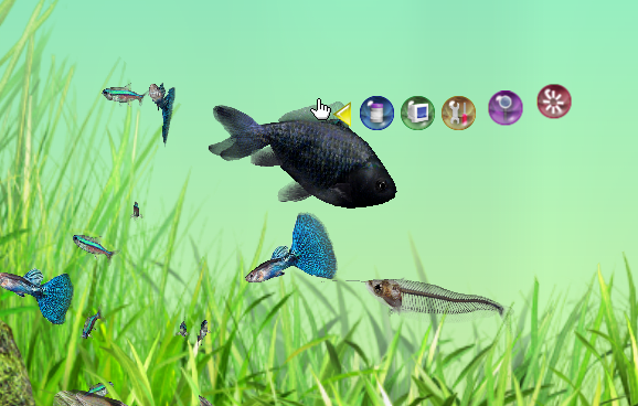 Aquazone Desktop Garden 1.0.1.1