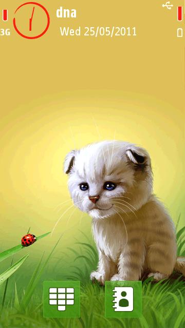 Ladybird and Kitten