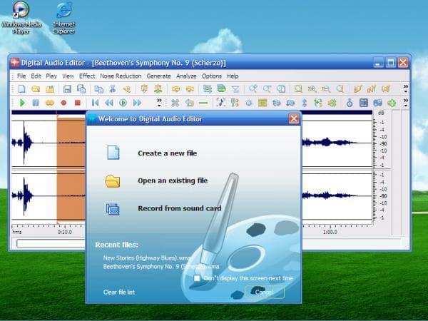 Digital Audio Editor