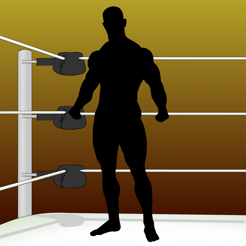 Crear Un Luchador.