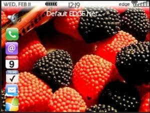 Win Iphone Theme Berry Fruit