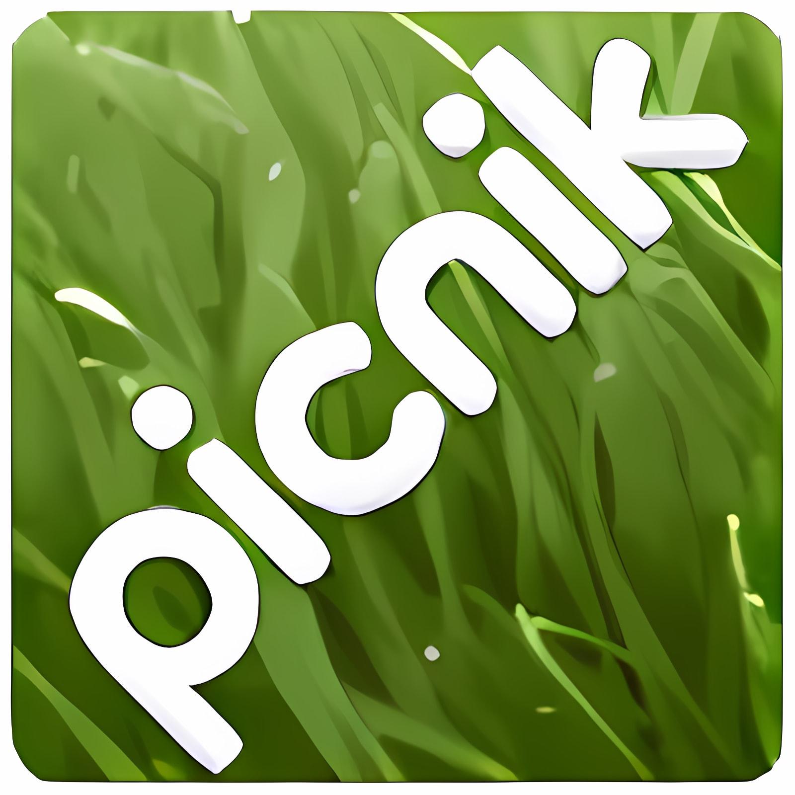 Picnik 1.0 (Internet Explorer)