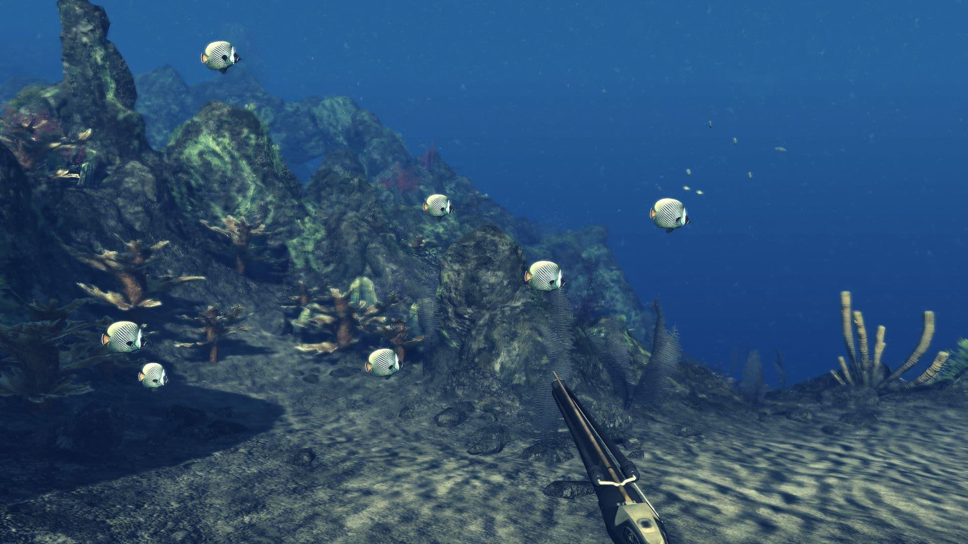 20 août 2014 ... Depth Hunter 2 est un jeu de chasse sous-marine, offrant une expérience totale  de sport extrême en pêche sous-marine! ... Les pêcheurs au harpon chassent en  plongeant en apnée retenant leur respiration ; ils doivent gérer...