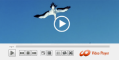 HD Video Media Player for Windows