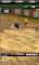Dog Racing - Dog race Simulator