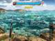 Fishing Clash Catching Fish Game Bass Hunting 3D