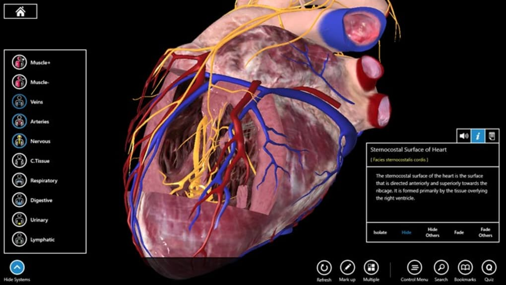 Essential Anatomy For Mac Download