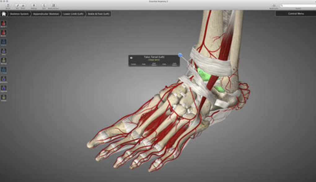 Essential Anatomy für Mac - Download