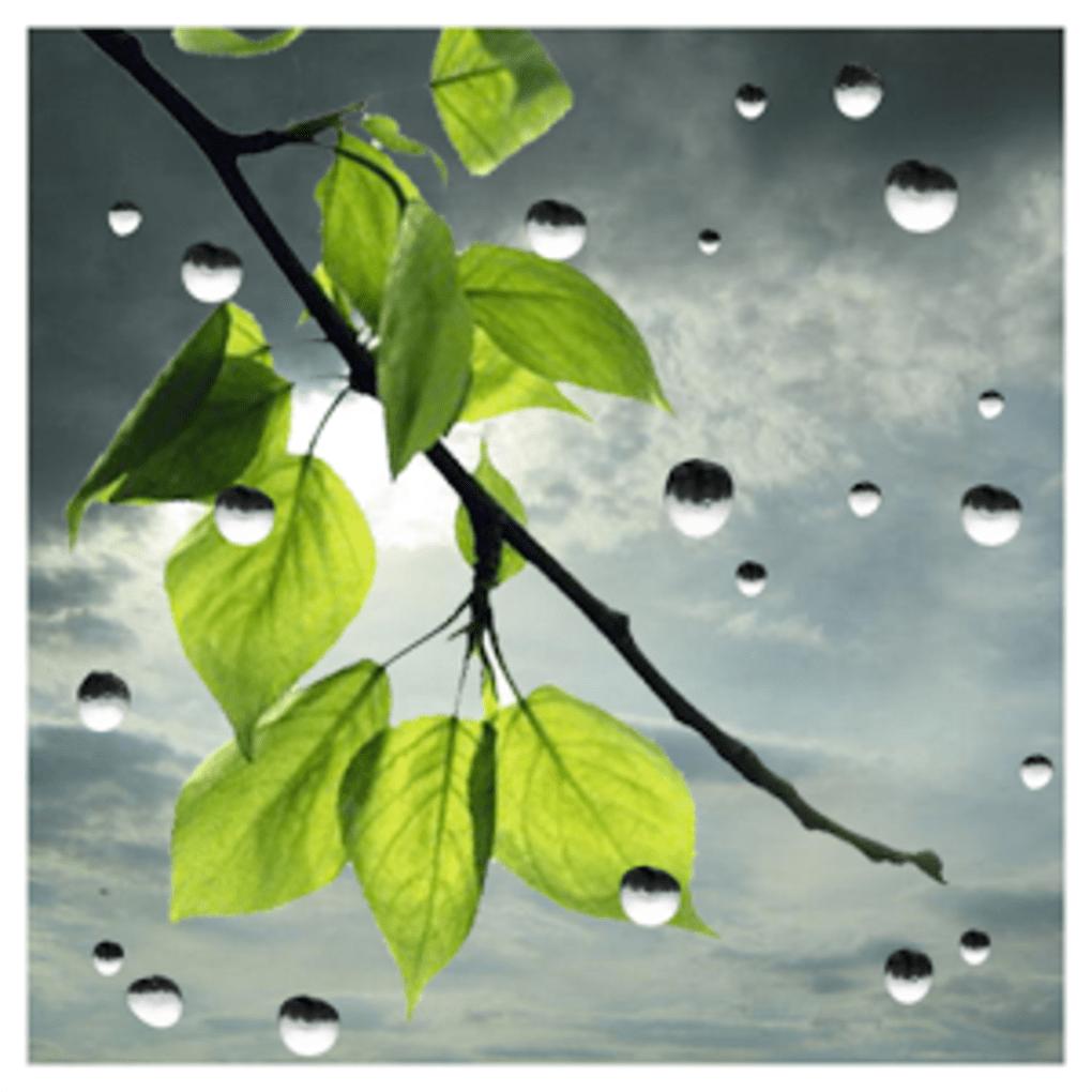 Raindrops Live Wallpaper: Rain Live Wallpaper For Android