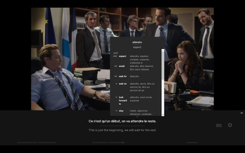 LLN: Language Learning with Netflix - Download
