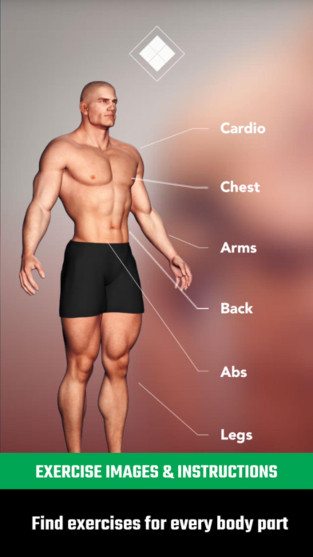 Download free bodybuilding workout software.