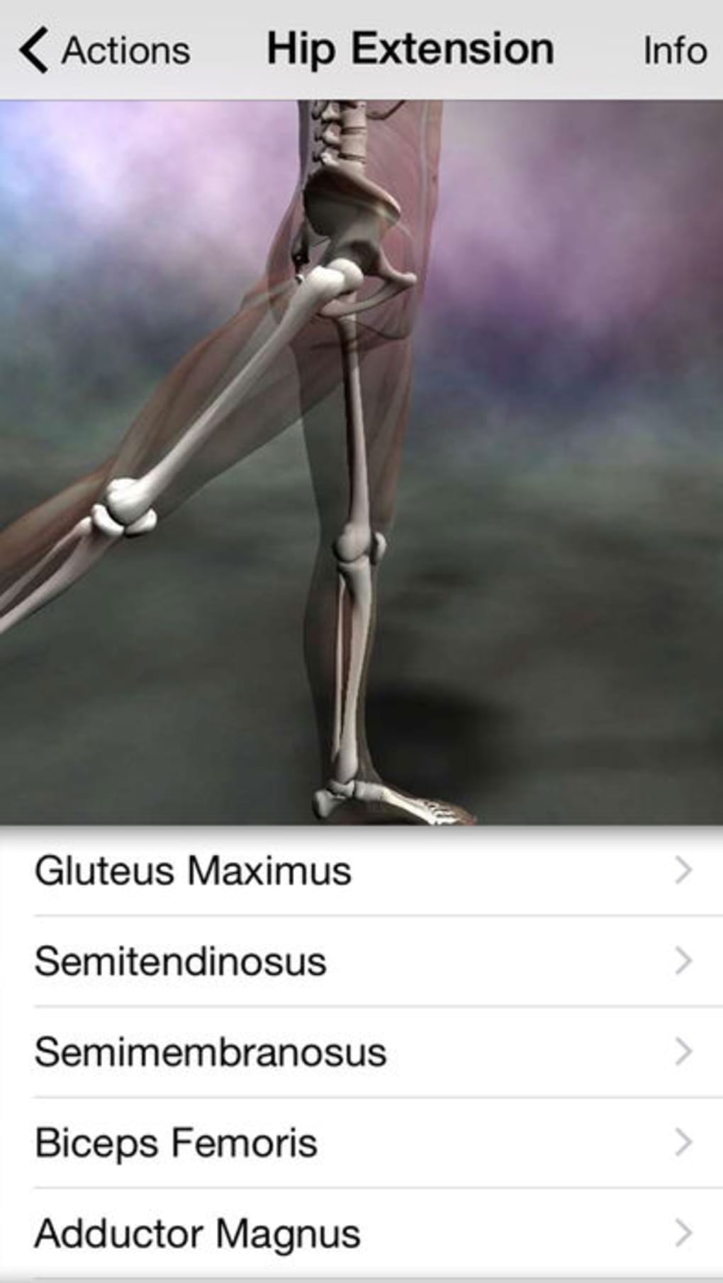 Download Learn Muscles Anatomy Latest Version Tb T Software Site