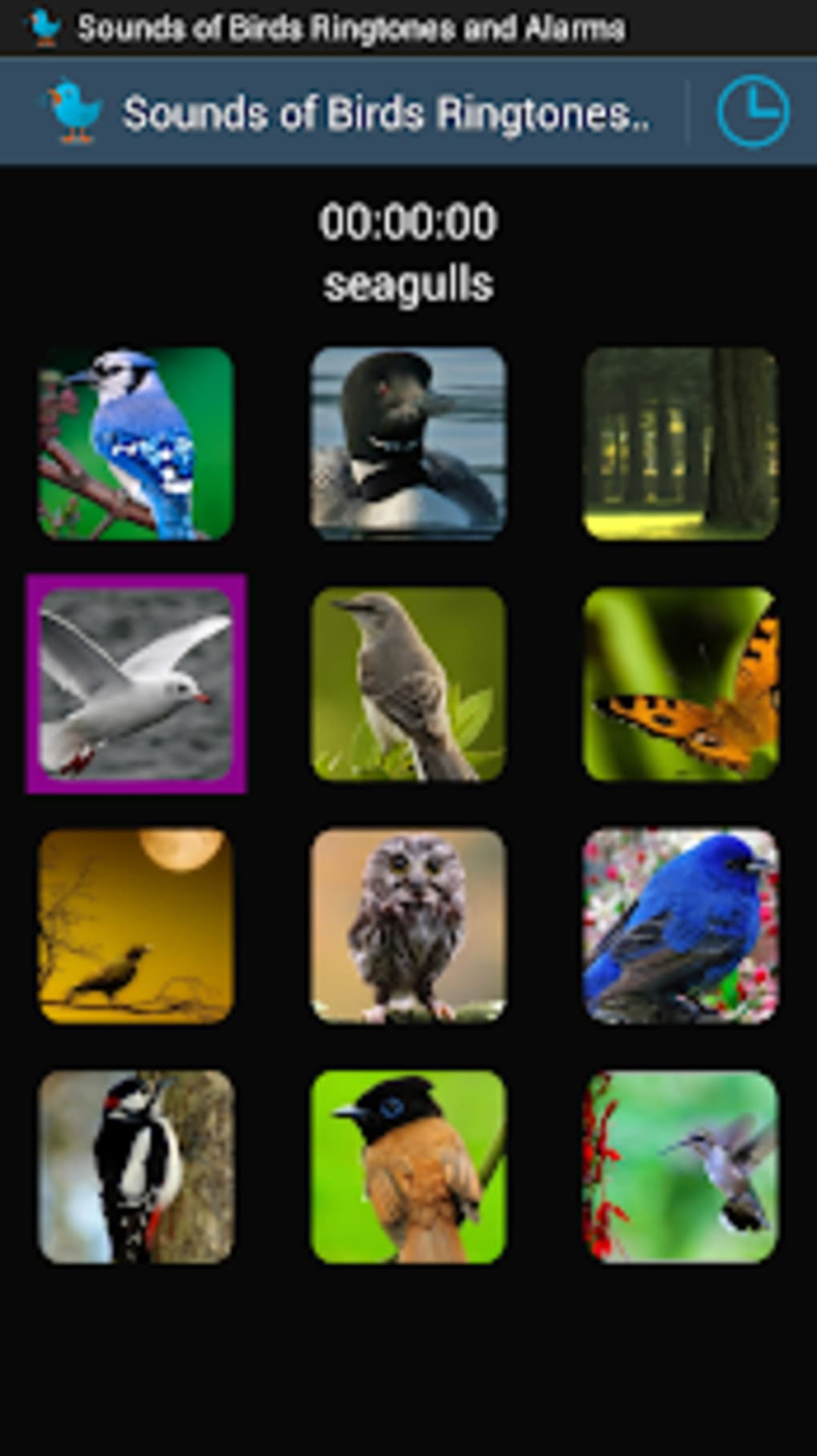 Sounds of Birds Ringtones for Android - Download