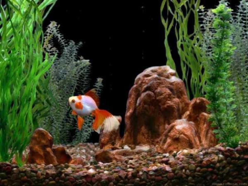 Goldfish Aquarium 1 4 Screenshots
