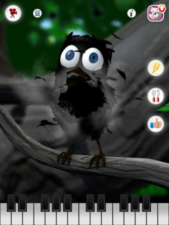Talking Larry The Bird Iphone App