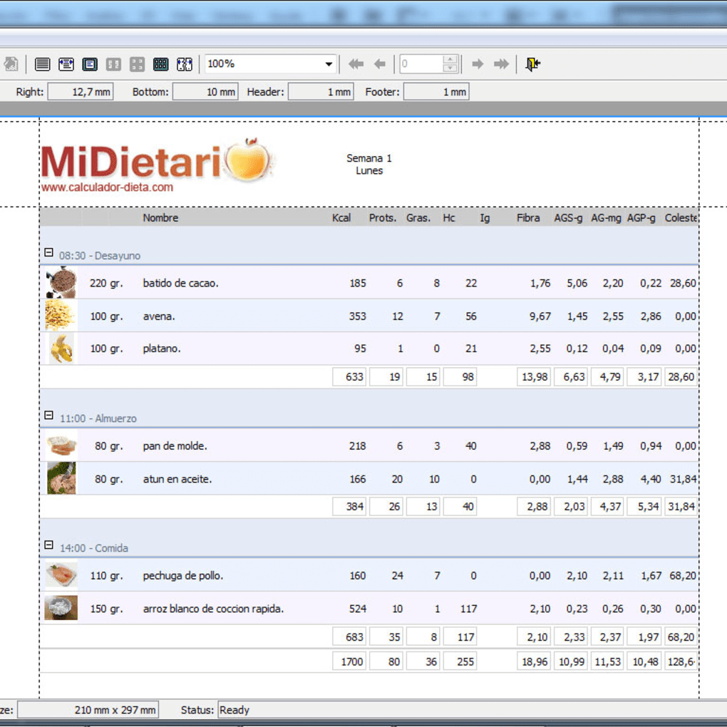 Programas para realizar dietas