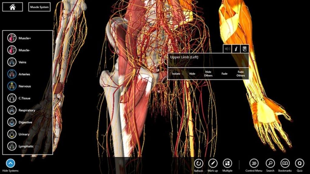Essential Anatomy - Download
