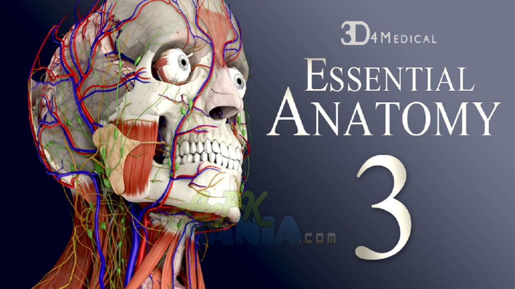 Essential Anatomy 3 - Descargar