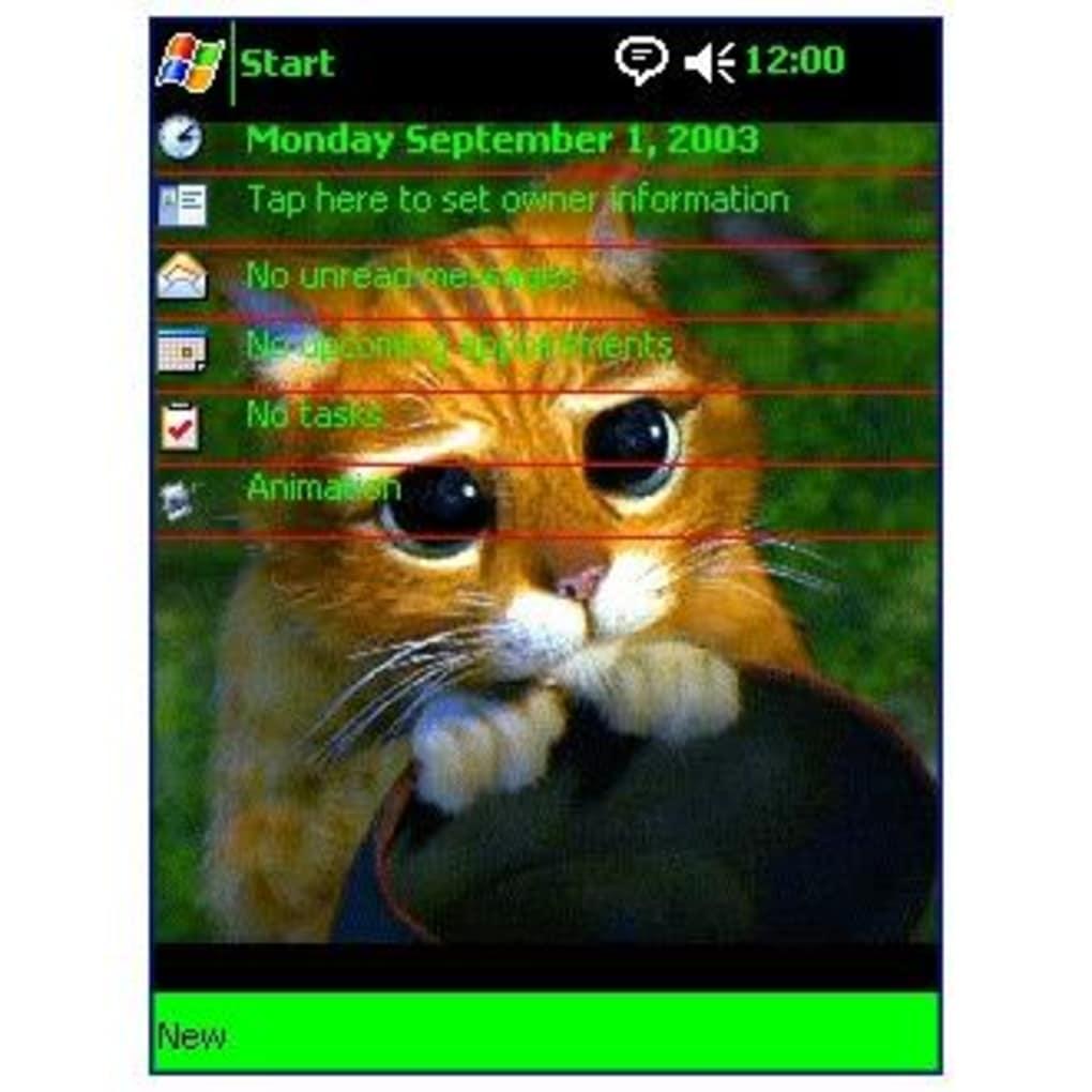 Descargar el gato 2003 latino dating 5