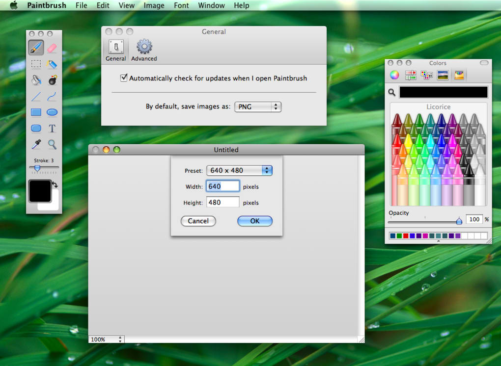 paint download mac os x