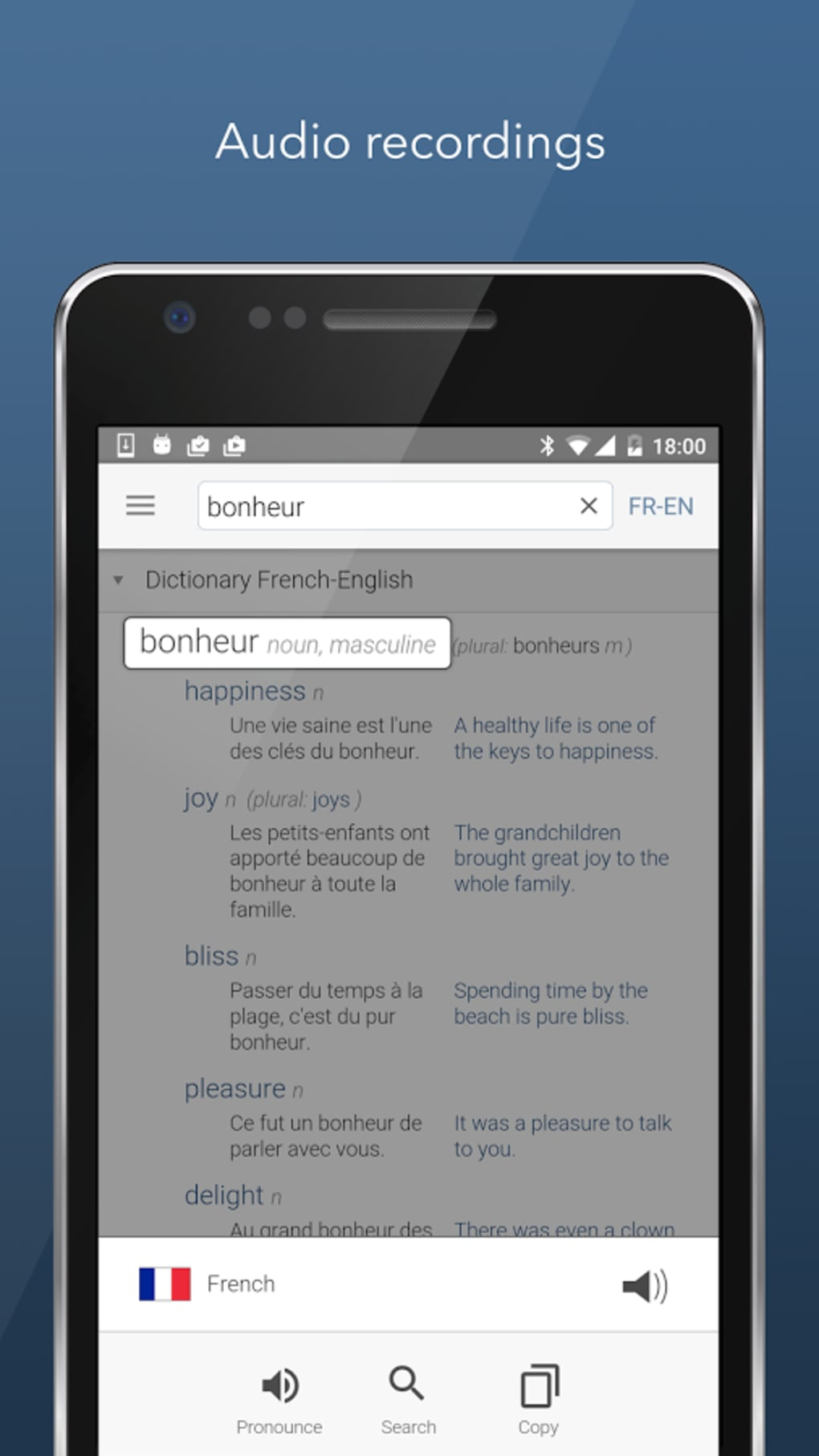 Dictionary Linguee for Android - Download