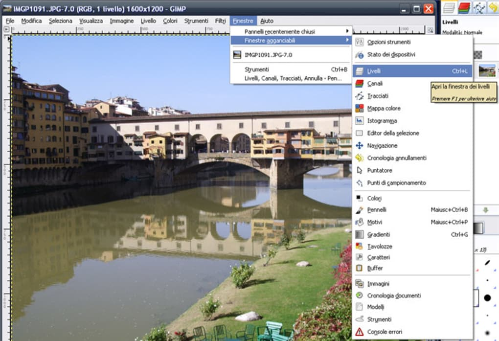 gimp 2.8 gratis in italiano