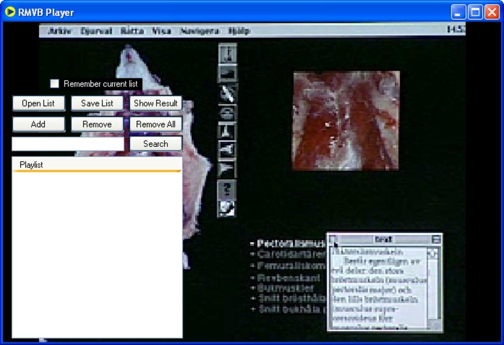 programa para ler arquivo rmvb