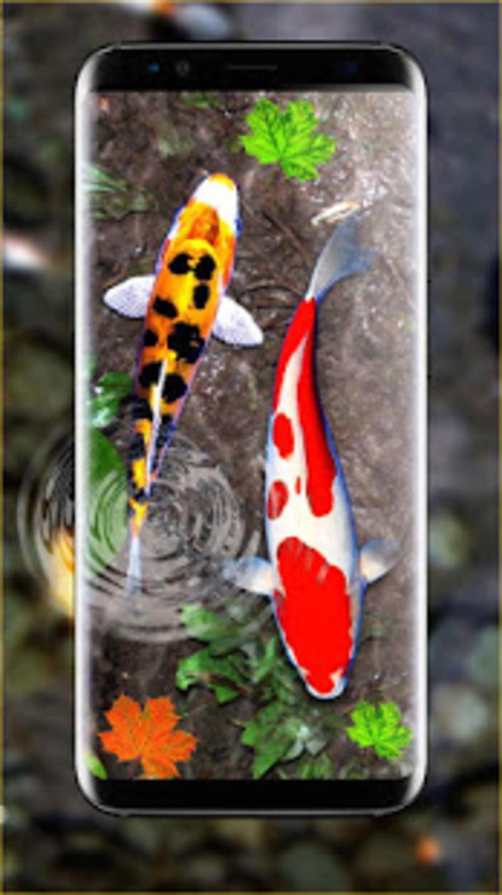 3D Koi Fish Wallpaper HD Live Wallpapers